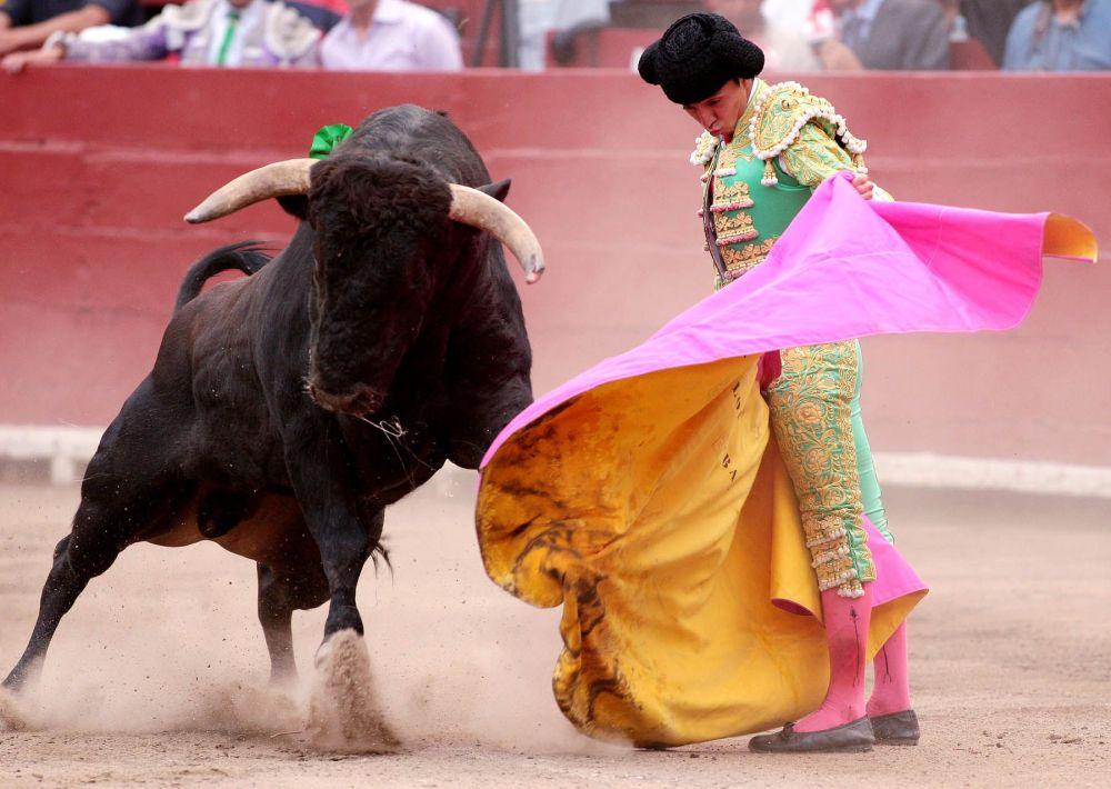 corrida-de-toros